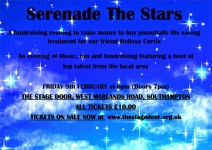 Serenade The Stars - Charity Fundraiser